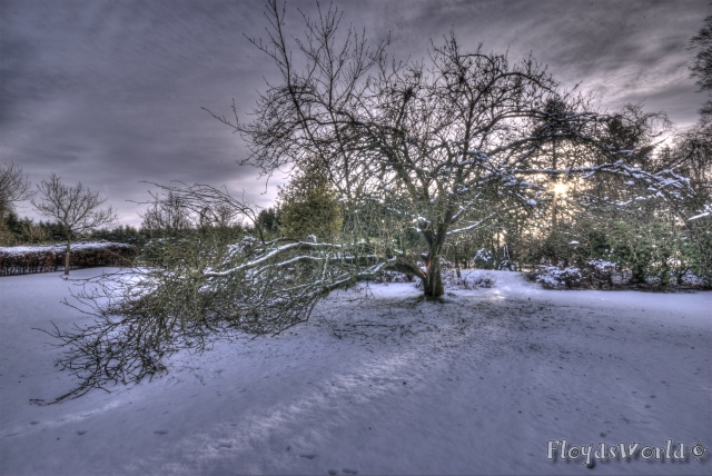 watermarked-DSC_0042_3_4_5_6_7_8_tonemapped