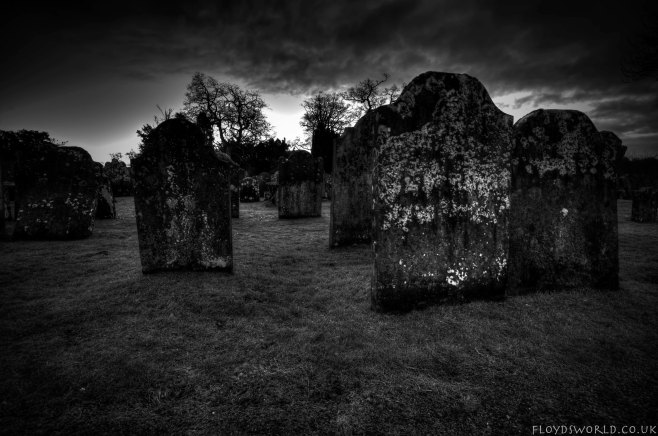 Graveyard09022015_0898